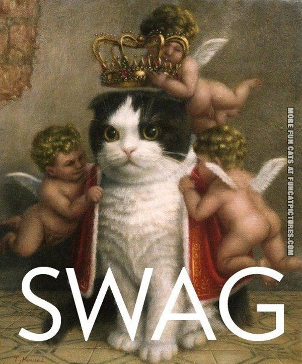 catwithswag
