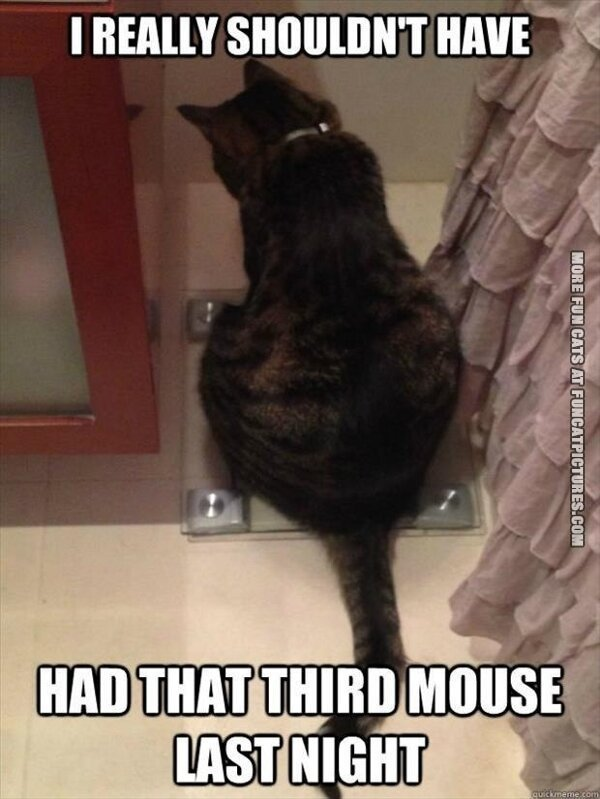 thirdmouse