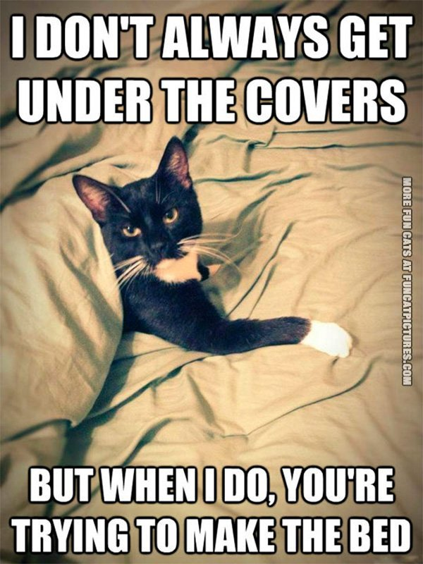i-dont-always-get-under-the-covers