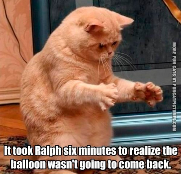 it-took-ralph-six-minutes-to-realize-the-balloon-wasnt-going-to-come-back