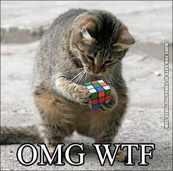 rubiks-cat-cube