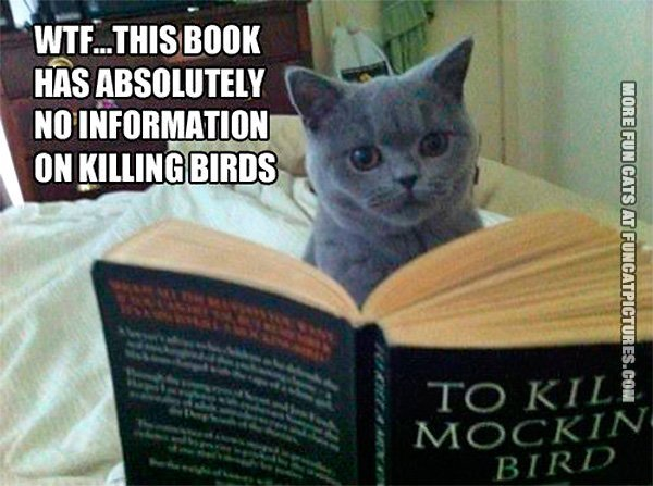 this-book-has-no-information-on-killing-birds