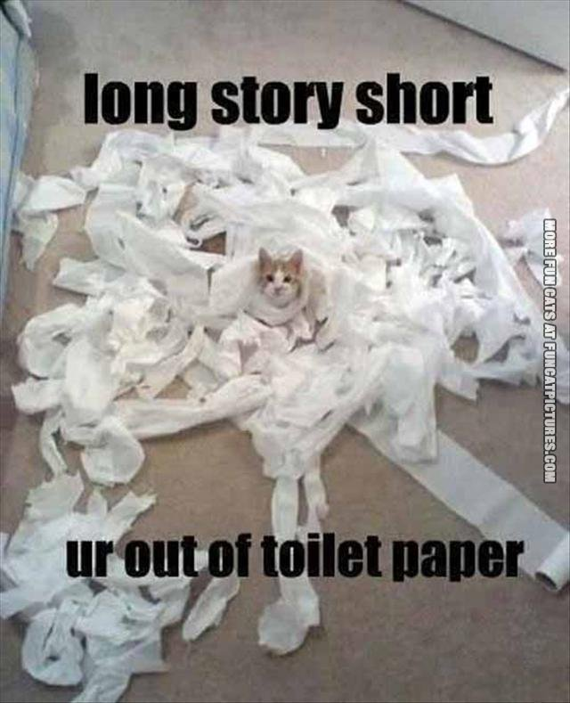youre out of toilet paper