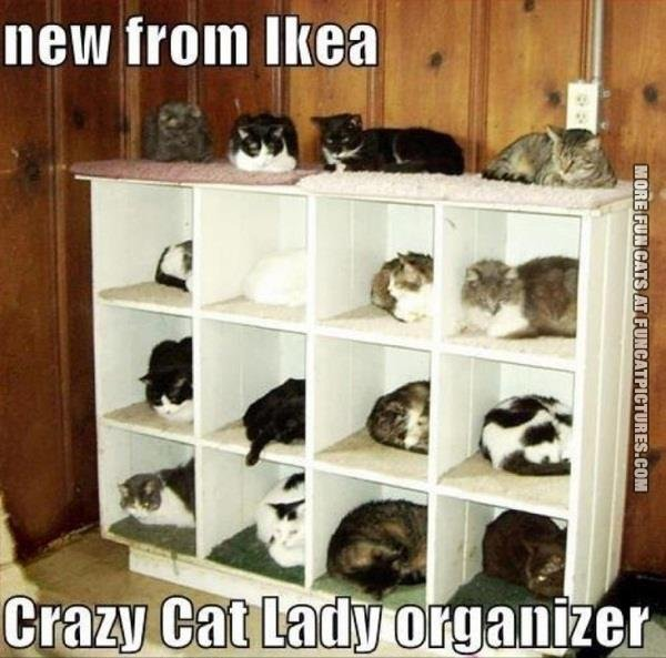 Crazy-cat-lady-organizer-brought-to-you-by-IKEA...