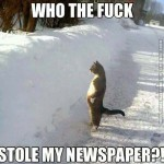 The newspaper is gone