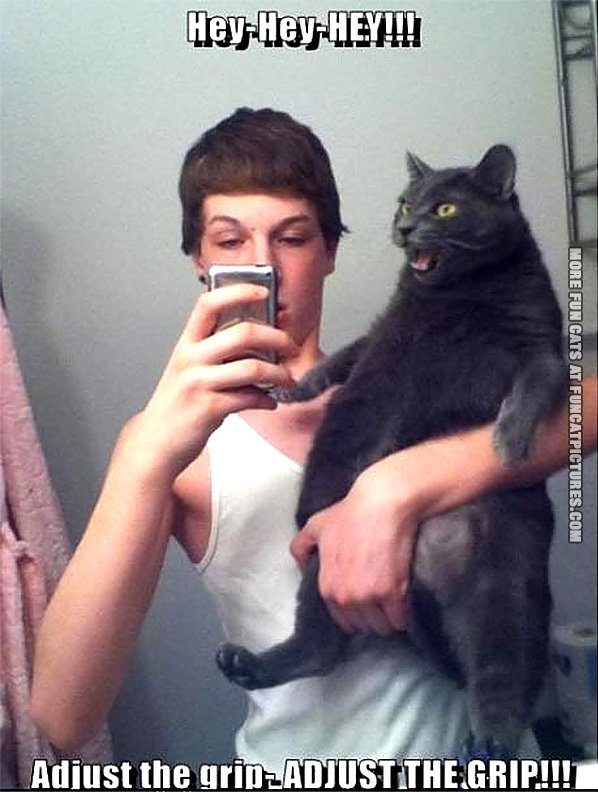 funny-cat-picture-adjust-the-grip