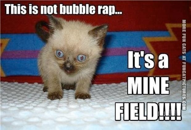 funny-cat-picture-its-not-bubble-wrap-its-a-mine-field
