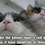 Don't get your cats a cell phone