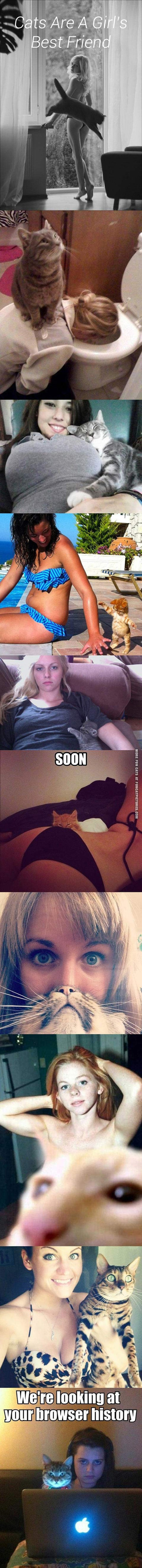 funny cat-pics-cats-are-a-girls-best-friend
