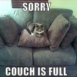 Cat on the couch means that the couch is full