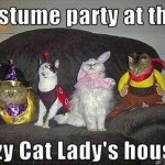 Crazy cat lady's costume party