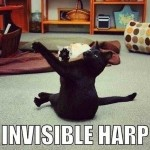 Cat playing invisible harp