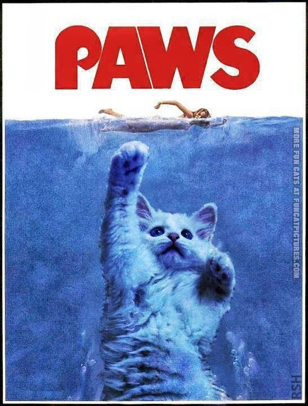 funny-cat-pics-paws-the-movie