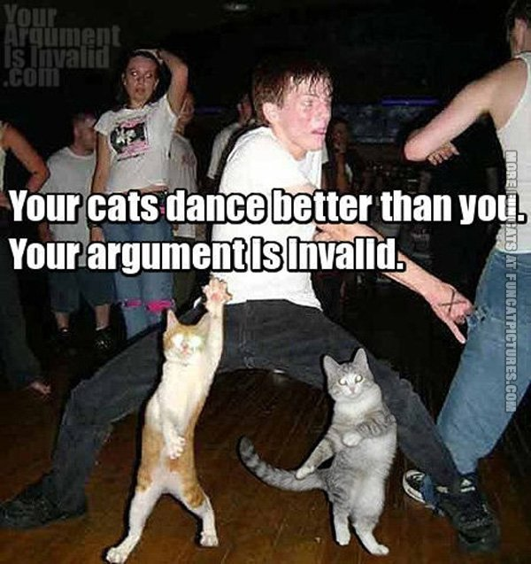 funny-cat-pics-your-cats-dance-better-than-you