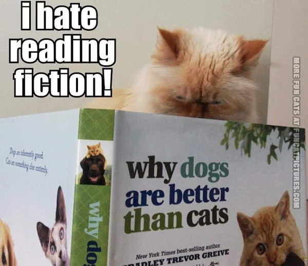 funny-cat-pics-i-hate-reading-fiction