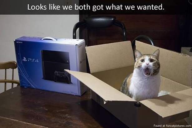 funny cat pictures both got what we wanted ps4 box
