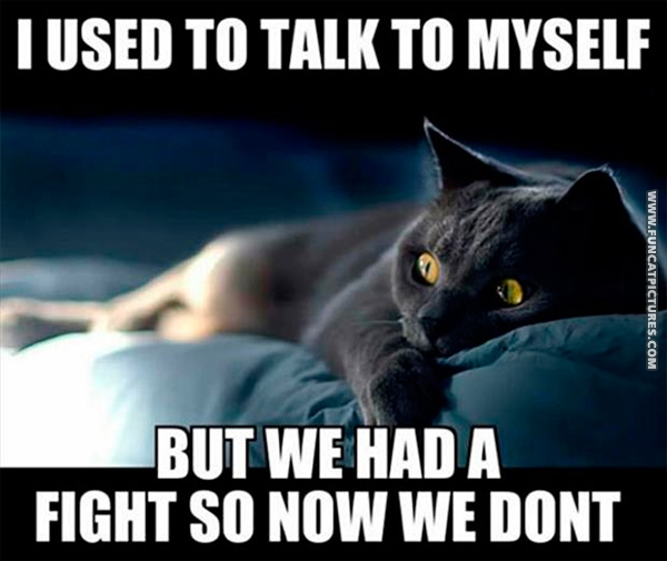 funny-cat-pictures-i-used-to-talk-to-myself