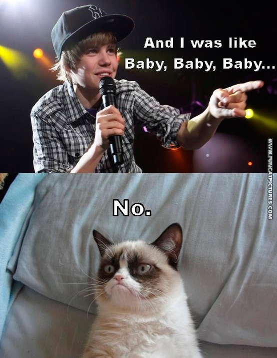 funny-cat-pictures-grumpy-doesnt-love-bieber