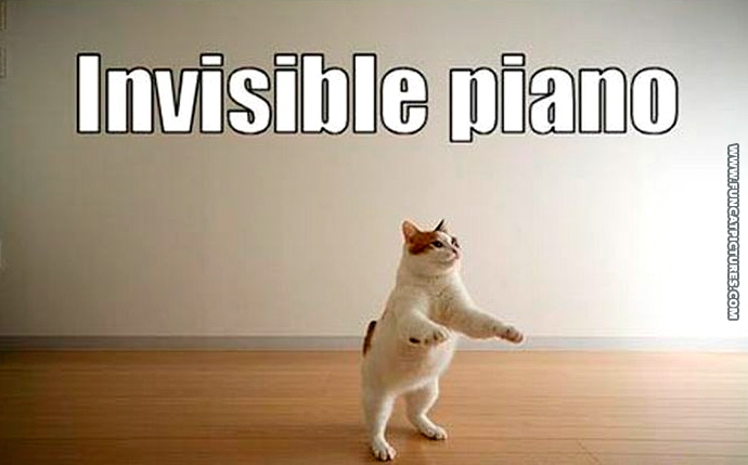 funny-cat-pictures-invisible-piano