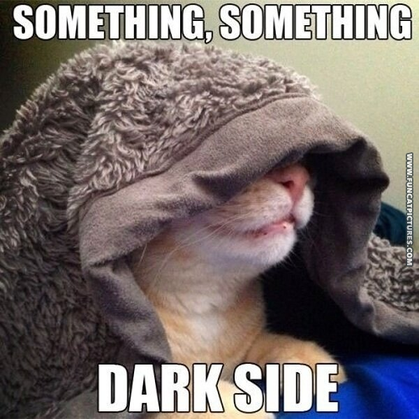 funny cat pictures star wars
