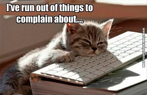 funny-cat-pictures-after-a-day-of-complaining