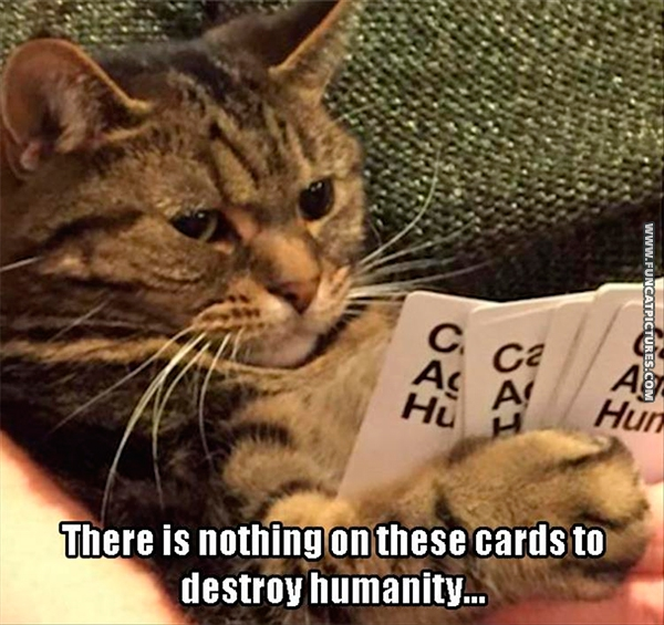 funny-cat-pictures-cards-to-destroy-humanity