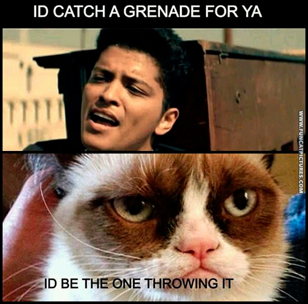 funny-cat-pictures-catch-a-grenade